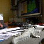 Bureau d'étude MCD travail  texture